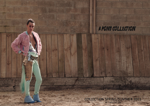 collection little pony coline teweeledee