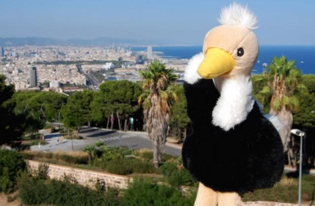 Le tourisme des peluches japonaises à Barcelone