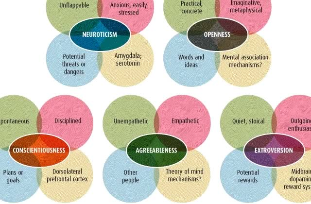 Live test : 5 traits de personnalité… Lequel est le vôtre ?