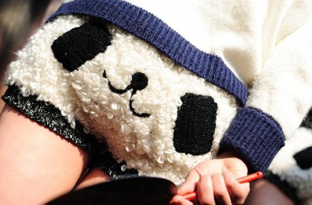 Kung-Fu Panda 2 – Bête de mode
