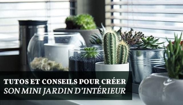 Jardin d 39 int rieur tutos et conseils pour cr er un mini for Interieur et jardin