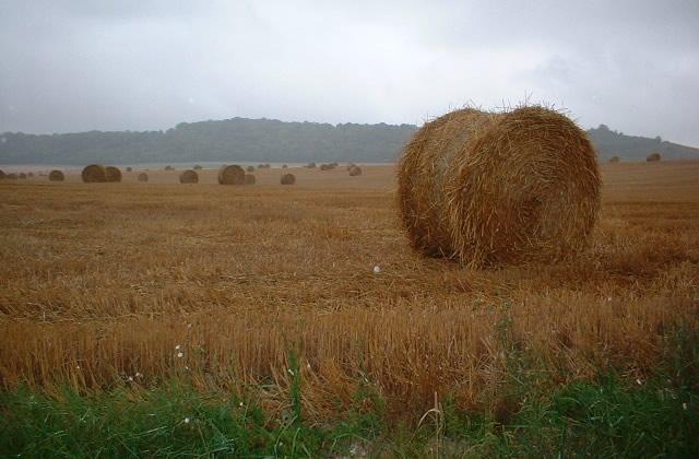 Que faire en Picardie ?