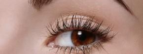 Sélection pour redessiner ses sourcils
