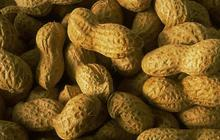 Dis Google, les cacahuètes…?
