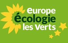 Interview de Camille, militante pour Europe Écologie – Les Verts