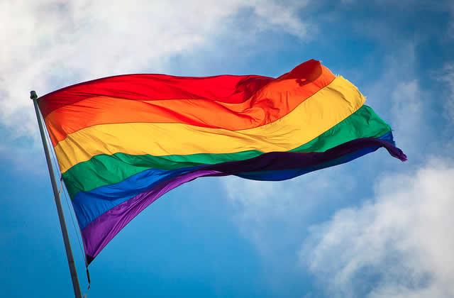 Mariage pour tous : on recherche des homosexuel.les qui se sentent stigmatisé.es