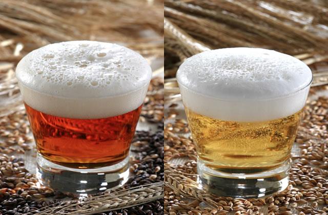 Les brasseurs de bière organisent des portes ouvertes !