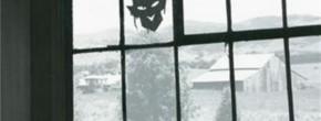 «Diable Rouge », un très bon polar par Joe R. Lansdale