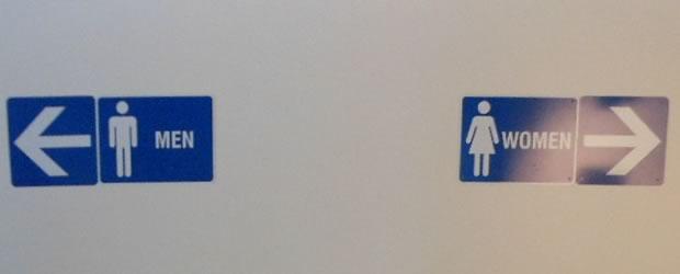 théorie du genre toilettes