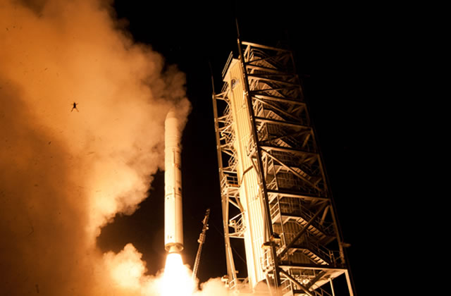 Frog rocket et les photobombs improbables — Mèmologie