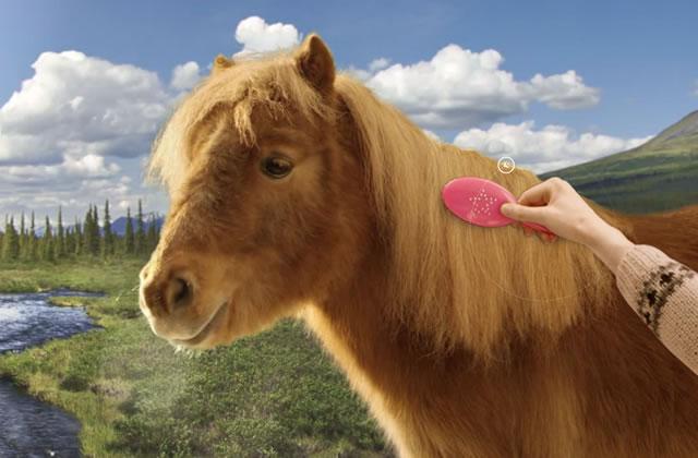 La carte de voeux zen de Canal+ (avec un poney)