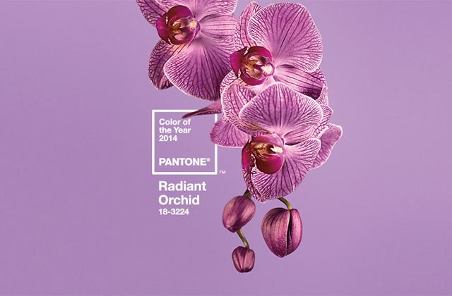 Comment porter Radiant Orchid sans faire mamie