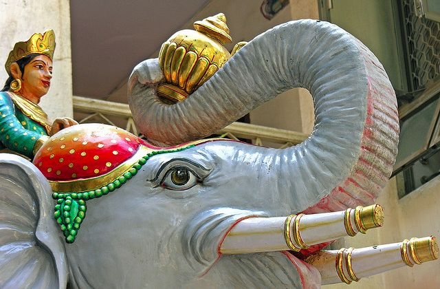 La promesse des éléphants  — La webfiction de la semaine