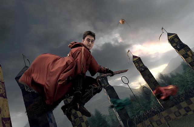 L'Histoire de la Coupe du Monde de Quidditch publiée sur Pottermore !