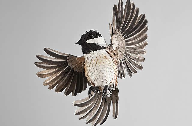 les magnifiques oiseaux en papier de diana beltran herrera. Black Bedroom Furniture Sets. Home Design Ideas