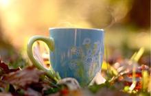 Le thé pour les nulles : comment s'y mettre et découvrir l'art du thé ?