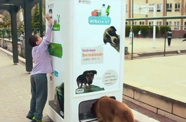 Des bouteilles recyclées pour nourrir les chiens errants