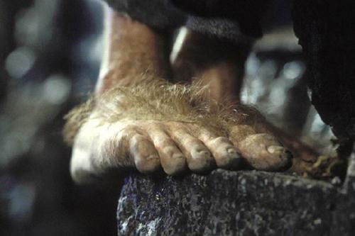 pieds-hobbit