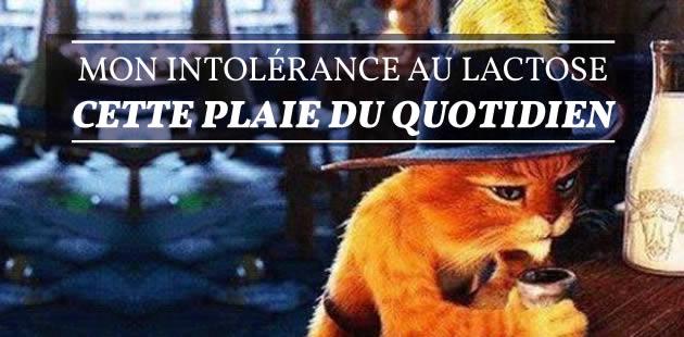big-intolerance-lactose