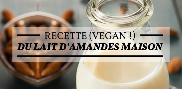 big-lait-amandes