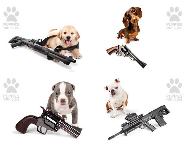 puppieswithguns