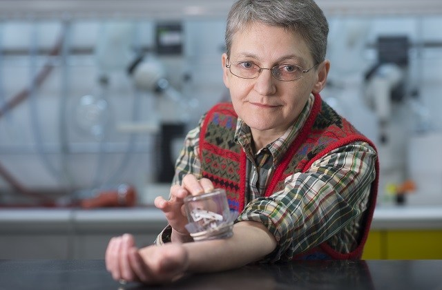 180 000 morsures de punaises de lit pour l'amour de la science
