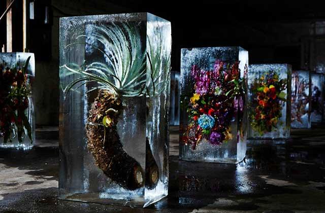 Les bouquets de fleurs emprisonnés dans la glace de Azuma Makoto