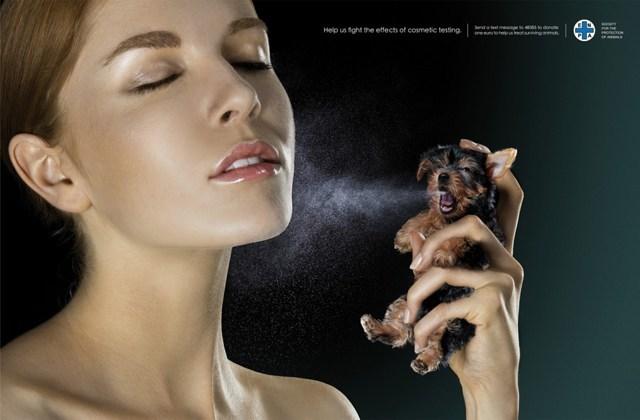La Corée du Sud va interdire les tests de cosmétiques sur les animaux