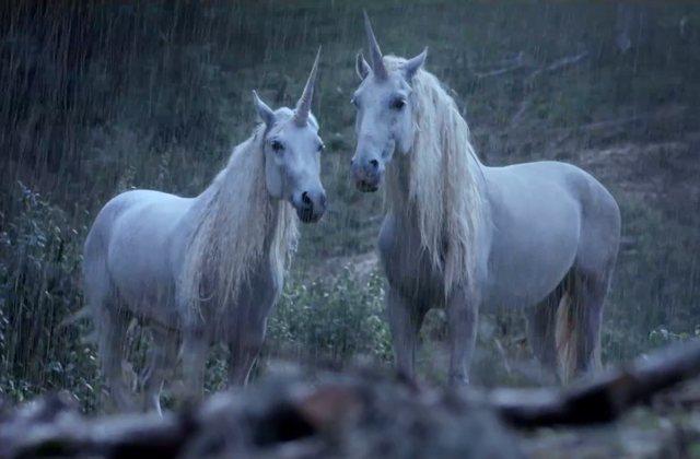Pourquoi les licornes n'existent-elles plus? Canal + a sa petite idée !