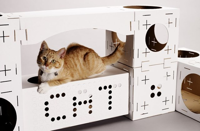 construire maison chat carton. Black Bedroom Furniture Sets. Home Design Ideas