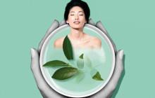 The Body Shop sort une nouvelle ligne pour le corps au thé vert