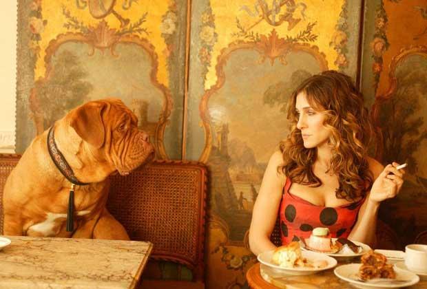 carrie-bradshaw-dog