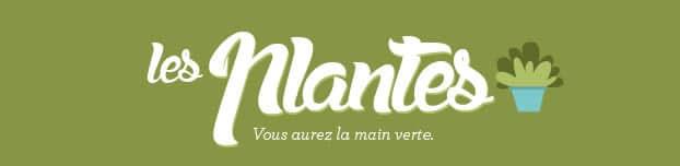 plantes-banner-04