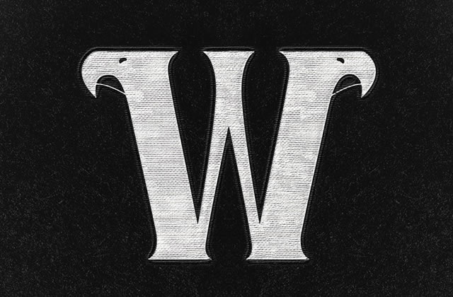 Les Wayward Birds seront en concert au Bus Palladium le 30 mai !