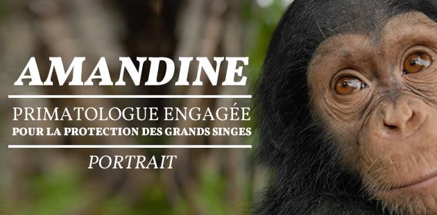 Amandine, primatologue engagée pour la protection des grands singes — Portrait