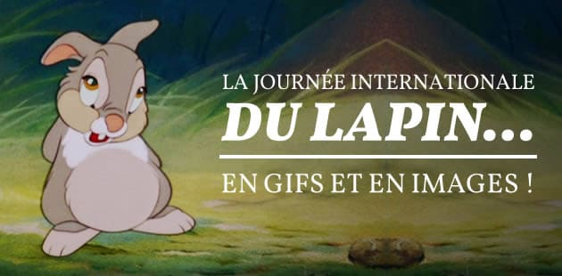 big-journee-du-lapin