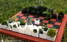 Un jeu d'échecs fait de petites plantes, la bonne idée pour des après-midi champêtres