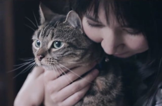 Un refuge pour chats et chiens lance «Who needs Who?», une campagne qui touche juste