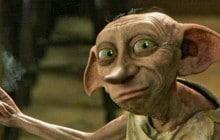 Dobby est un elfe libre, et ses fans le font savoir !