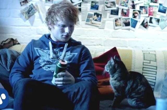 Ed Sheeran et ses douces joues de bébé — Les fantasmes de la rédac