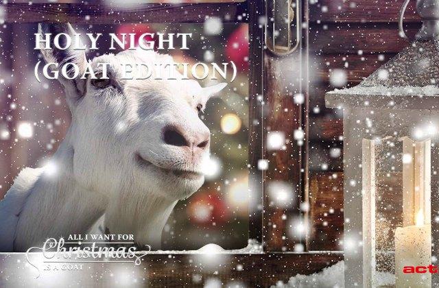 L'album des chansons de Noël… chantées par des chèvres
