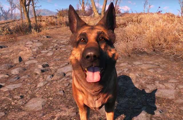 Connais-tu bien les chiens dans les jeux vidéo ? — Quizz à poils longs