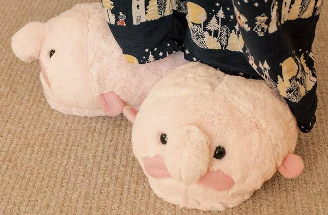 Les pantoufles blobfish — Idée cadeau pourrie (mais un peu cool quand même)