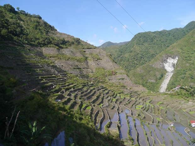 carte-postale-philippines-riziere