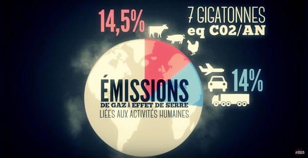 datagueule-boucherie-emissions-co2-15-pourcent
