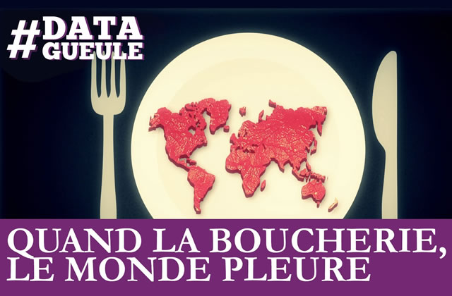 Data Gueule dissèque l'industrie de la viande et ses conséquences pour la planète