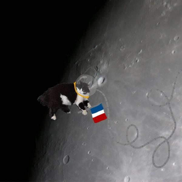 boulette-sur-la-lune