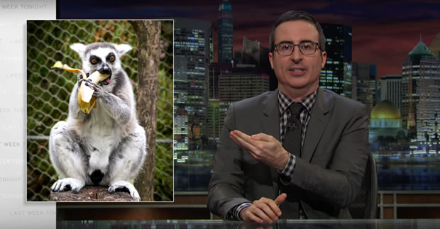 john-oliver-donald-trump-lemur