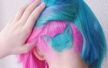 Le «rainbow cat», la nouvelle tendance capillaire probablement inspirée par Voldemort