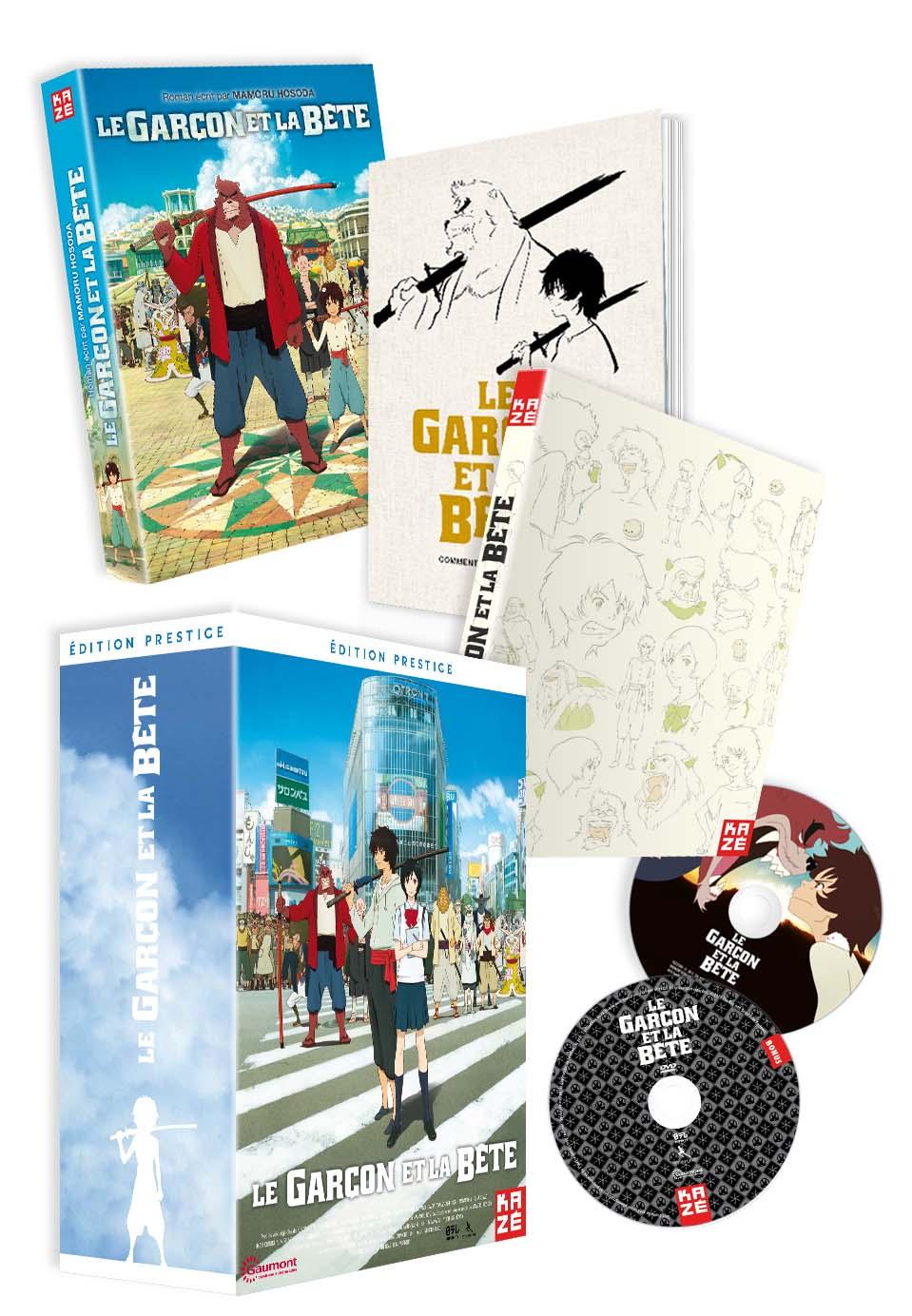 LE_GARCON_ET_LA_BETE_COLLECTOR_3D-eclate-DVD